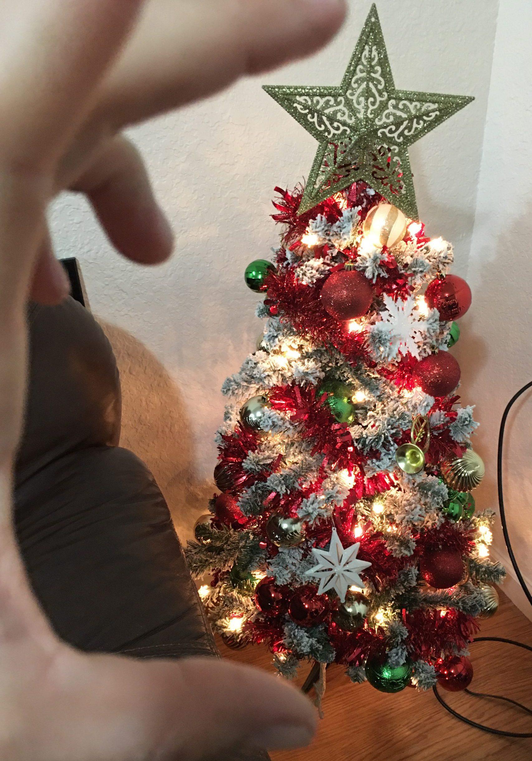 Leannis_Tree